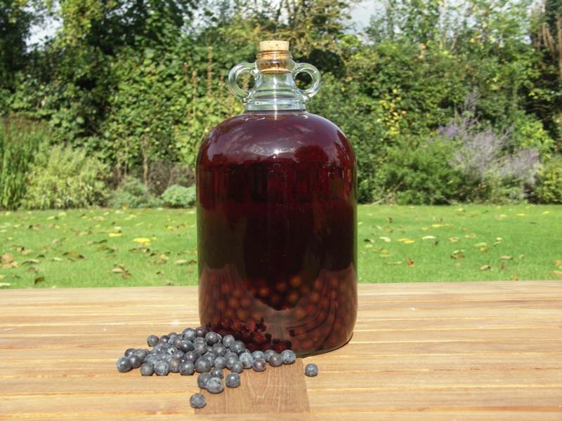 How To Make Sloe Gin >> How To Make Sloe Gin